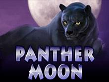 Игровой автомат Panther Moon в Вулкане Удачи
