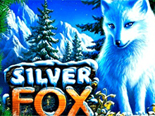 Автомат Silver Fox в казино Вулкан Удачи