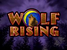 Игровой автомат Wolf Rising