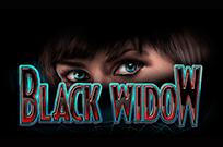 Играть в казино Вулкан Удачи в Черная Вдова