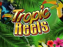 Играть в казино в слот Тропические Барабаны